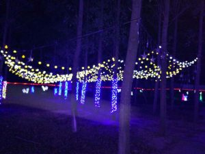 Led Light Show With New Designs In Park Decoration Adopts The Main Products Such As Animal Motif Lights Pea Giraffe Heart