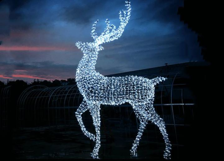 Led Reindeer Christmas Decoration
